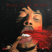 Awake in My Dreams by Tizzy