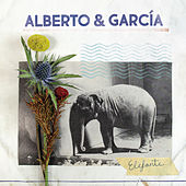 Elefante von alberto
