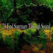 78 Find Sanctuary Through Sound von Study Concentration