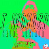 I Wonder by Mark Pheonix