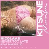 Never Too Late de Nicolaas