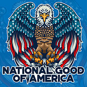 National Good of America by Various Artists