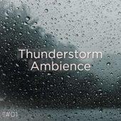 !!#01 Thunderstorm Ambience de Thunderstorm Sound Bank