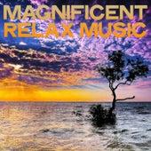 Magnificent Relax Music (Lounge Music Best Selection) de Various Artists