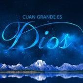 Cuan Grande es Dios de Various Artists