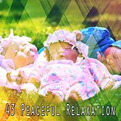 43 Peaceful Relaxation de Best Relaxing SPA Music