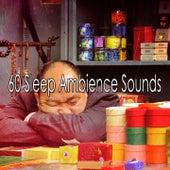 60 Sleep Ambience Sounds by Deep Sleep Music Academy