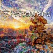 77 Peaceful Mind de Meditación Música Ambiente
