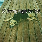 37 Stormy Night for Rest by Rain Sounds and White Noise