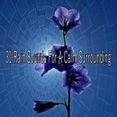 31 Rain Sounds for a Calm Surrounding de Thunderstorm Sleep