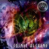 Cosmic Alchemy de Various Artists