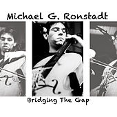 Bridging the Gap von Michael G. Ronstadt
