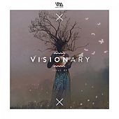 Variety Music Pres. Visionary Issue 21 de Various Artists