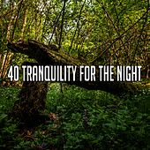40 Tranquility for the Night de Water Sound Natural White Noise
