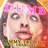 Dumb by Timmy Trumpet