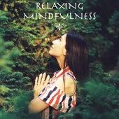Relaxing Mindfulness de Relaxing Mindfulness Meditation Relaxation Maestro