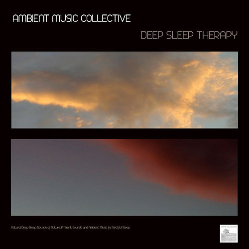 Deep Sleep Therapy - Natural Deep Sleep, Sounds of Nature, Ambient Sounds and Ambient Music for Restful Sleep. Ambient Music by Ambient Music Collective