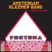 Tanz Tanz Tanz by Amsterdam Klezmer Band
