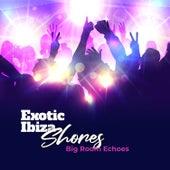 Exotic Ibiza Shores: Big Room Echoes de Various Artists