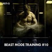 Beast Mode Training, Vol. 10 de Hot Q