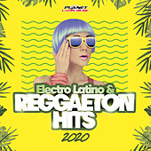 Electro Latino & Reggaeton Hits 2020 de Various Artists