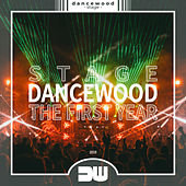Dancewood Stage - The First Year de Various Artists