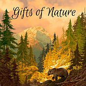 Gifts of Nature by Delaware Saints