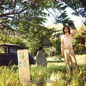 Gray Sunset (Remastered) by Ariel Pink's Haunted Graffiti