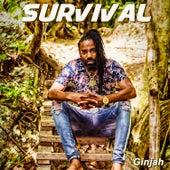 Survival de Ginjah