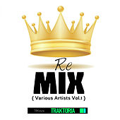 Re Mix, Vol. 1 by Various Artists