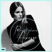 Prestigious House, Vol. 24 by Various Artists
