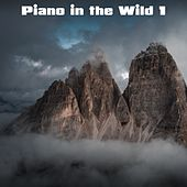 Piano in the Wild, Vol. 1 by Nature Sounds (1)