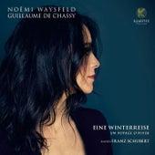 Schubert: Eine winterreise, un voyage d'hiver de Noëmi Waysfeld