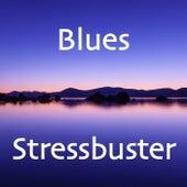 Blues Stressbuster von Various Artists