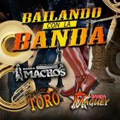 Bailando Con La Banda de Various Artists