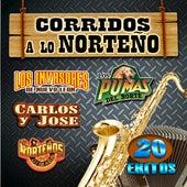 Corridos A Lo Norteño de Various Artists