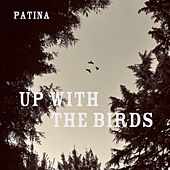 Up with the Birds by Patina