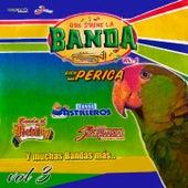 Que Suene La Banda Bien Perica, Volumen 3 de Vários Artistas