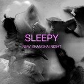 New Shanghai Night by Sleepy
