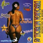 Descarga Musical #5 by Various Artists
