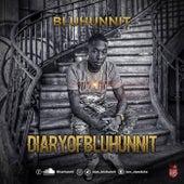 Diary Of BluHunnit by Blu Hunnit