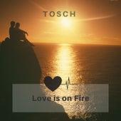 Love Is on Fire de Tosch