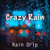 Crazy Rain de Rain Drip