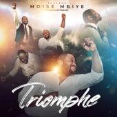 Triomphe (La reserve de l'eternel) de Moise Mbiye