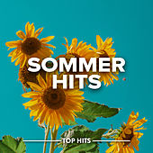 Sommerhits von Various Artists