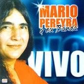 Vivo (En Vivo) by Mario Pereyra y Su Banda