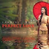 Perfect Love de Emmanuele Landini