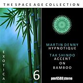 The Space Age Collection; Exotica, Volume 6 by Martin Denny