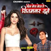 Dil Mera Todha Hai Sitamgar Tune - Single by Sajid