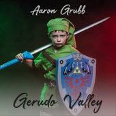 Gerudo Valley di Aaron Grubb